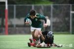成城戦写真10