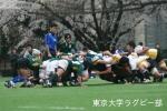 2008春vs青山学院大・1