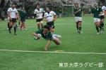2008春vs青山学院大・8