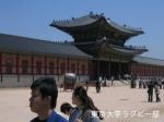 ソウル大国際交流・試合の翌日にはソウル観光も!