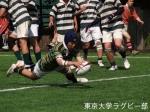 vs東北 山本のトライ!!
