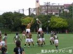 vs慶応 ラインアウト